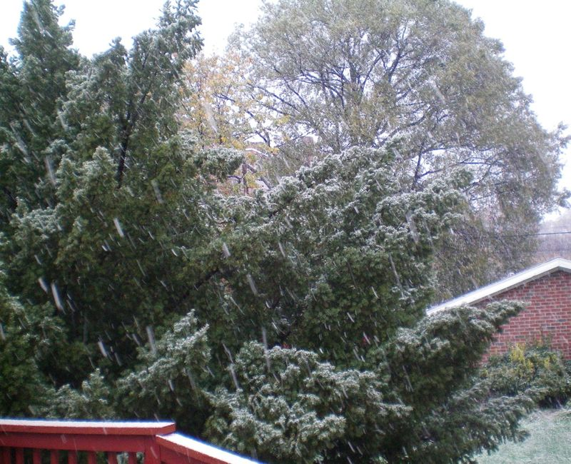 First snow of season