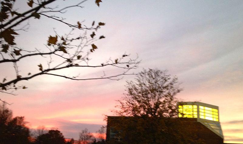 Sunset1182