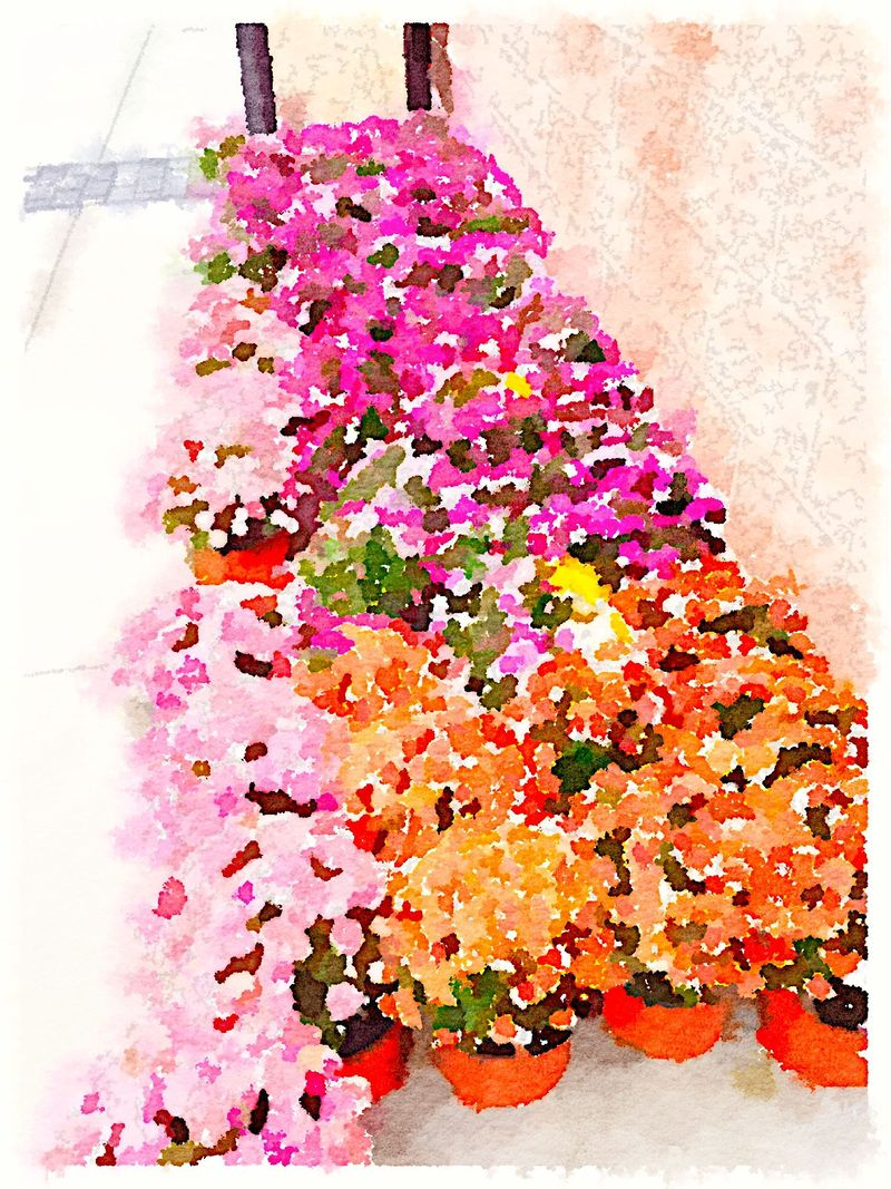 Painted in Waterlogue-Mums