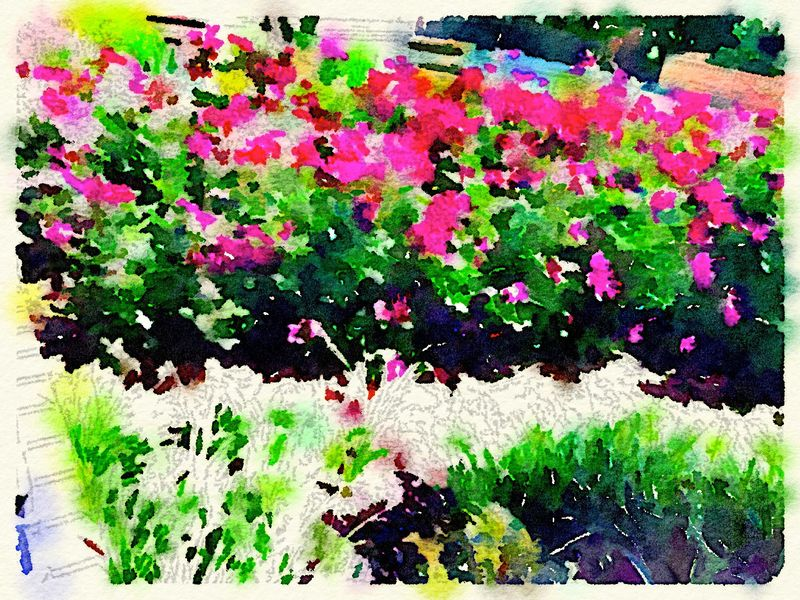 Painted in Waterlogue-bright