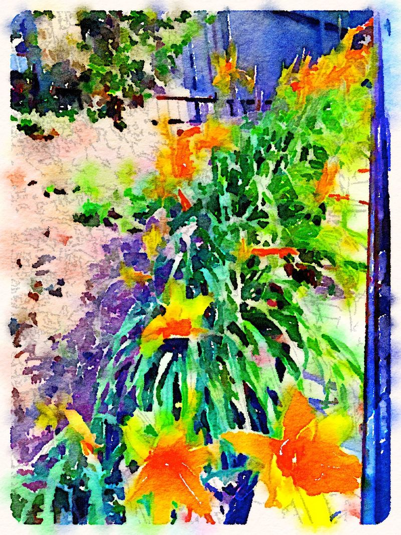 Painted in Waterlogue -daylilies aglow
