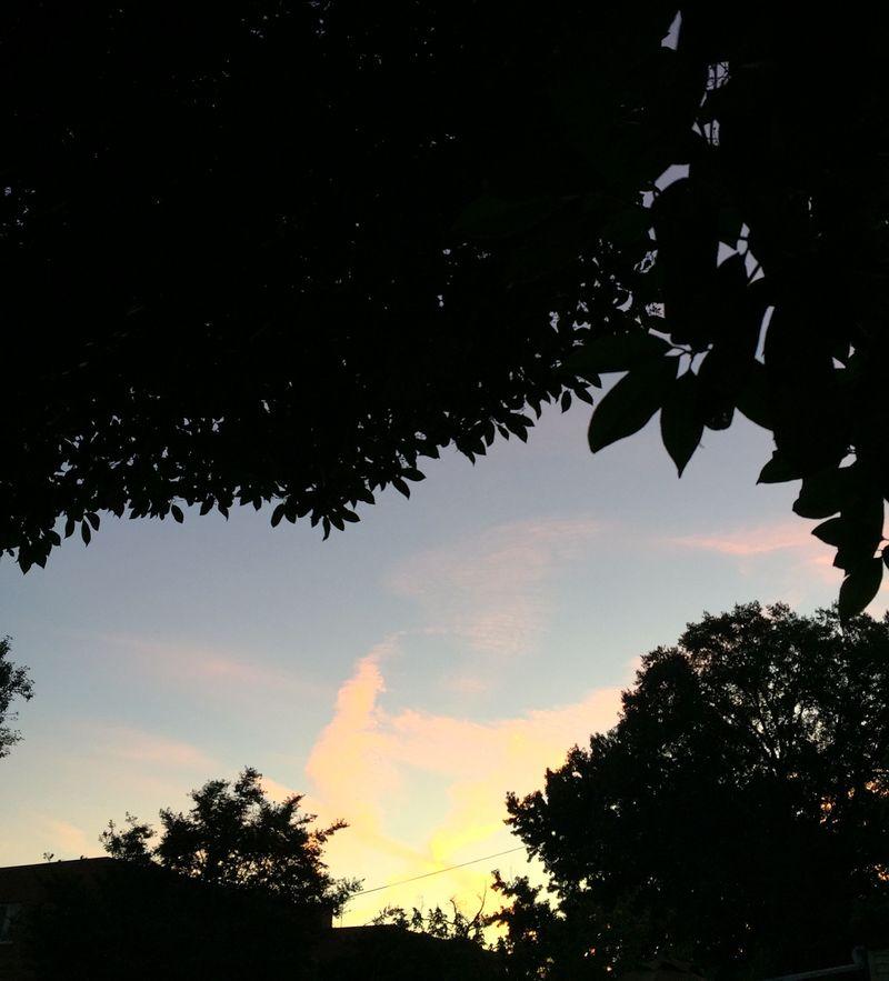 Sunrise 9.16