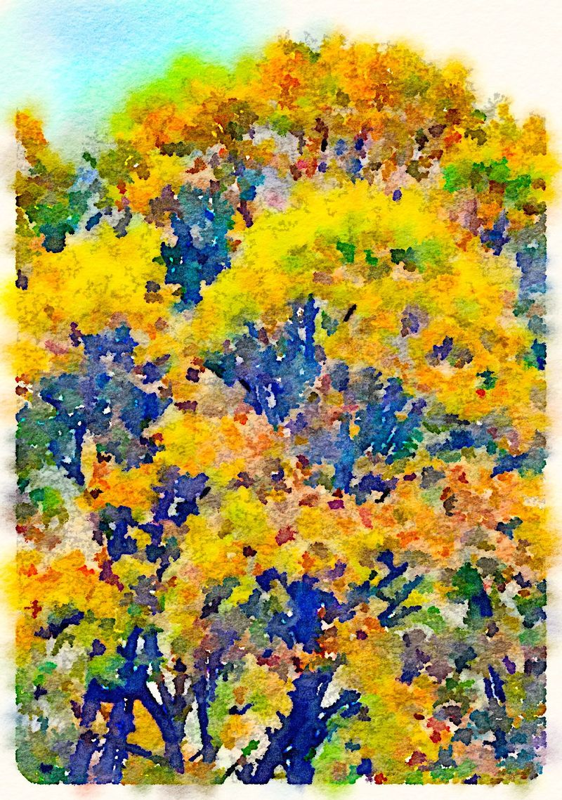Painted in Waterlogue-Fall Tree #1