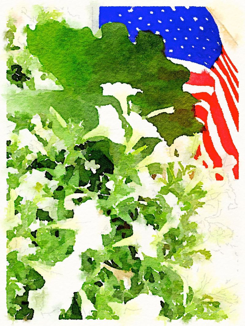 Painted in Waterlogue-Flag