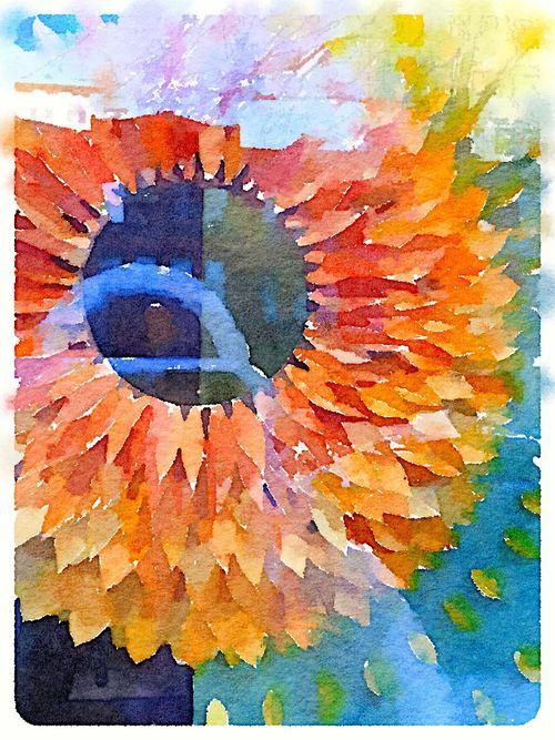 Painted in Waterlogue-Anthropologie Window