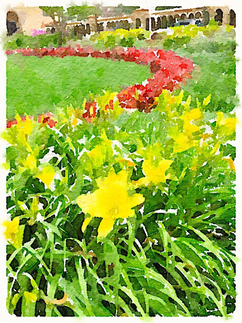 Painted in Waterlogue - Yellow Red