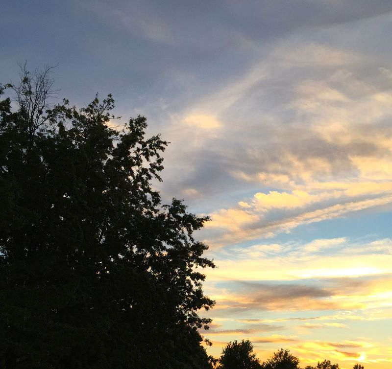 WiTL 2015-05 sunset