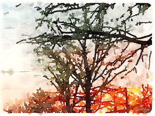 Painted in Waterlogue - Sunrise 2.6
